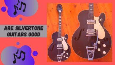 Are Silvertone Guitars Good